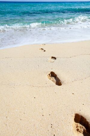 Footprints on the sunny beach  Perfect place for vacations