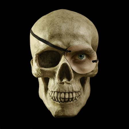 human bones: scull with one eye