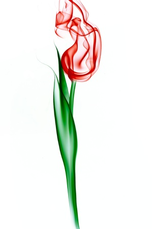 red tulip made from smoke on white background  photo