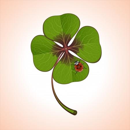 lady beetle: green four-leaf clover with ladybug Illustration