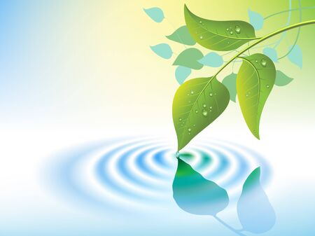 water ripple and green leaf vector Vector