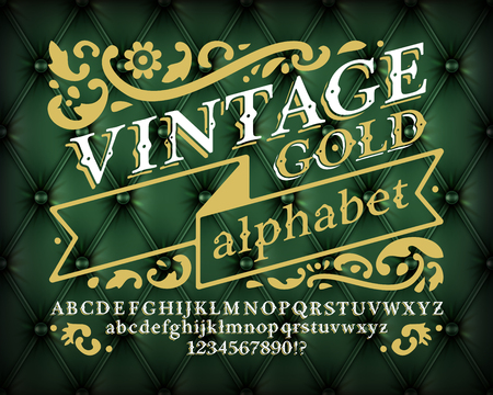 buttoned: Retro vintage alphabet font. Custom type letters and numbers on a dark luxury buttoned leather background Illustration