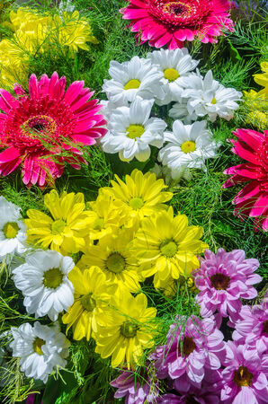 a radiant and colorful floral composition photo
