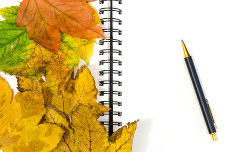 blank ringed notebook half-covered by autumn leaves with a pen photo