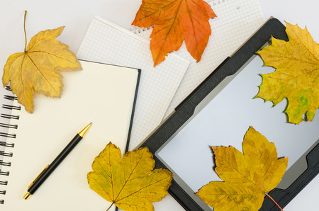 tablet with blank office notepads covered by autumn maple leaves photo
