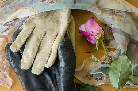 poetic: poetic composition with gloves and a rose