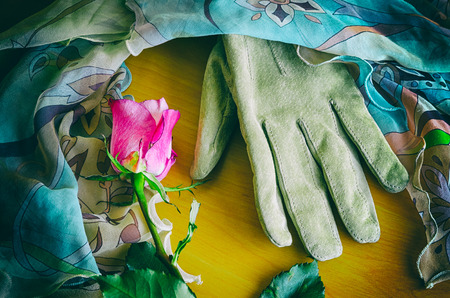 poetic: a poetic arrangement of a female glove and a rose