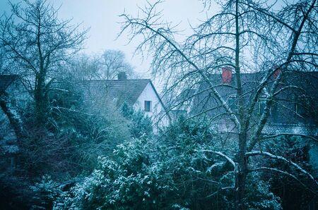 suburban: snowed in green suburban residential area