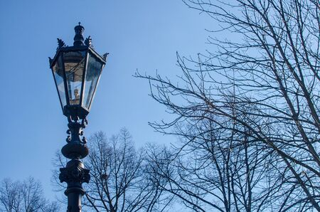 juxtaposition: retro style street lamppost with tree branches in winter