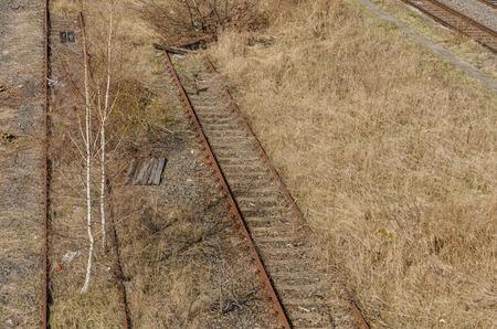 abolished: old abandoned railway tracks covered with vegetation Stock Photo