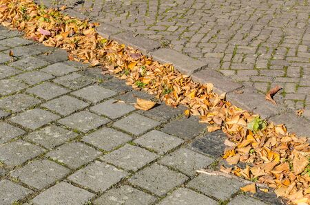 curb: pile of autumn leaves at the curb between stone sidewalk and road