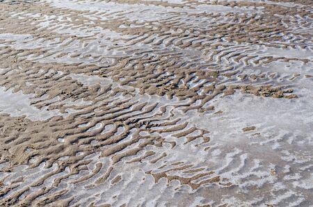 バルト海の凍結する水とオーバーレイの岸の小さな砂丘