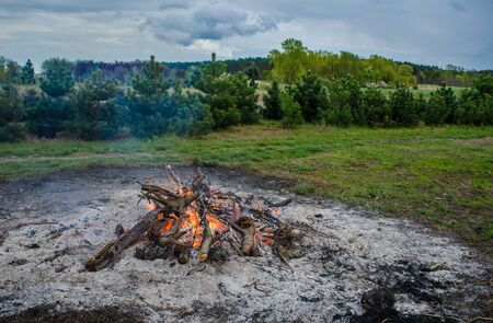 バック グラウンドで美しい緑の景観を持つ燃焼たき火