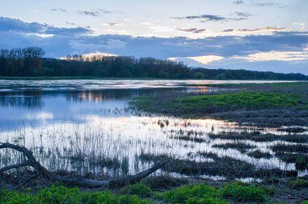 エルベ川で自然の調和
