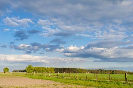 晴れた春の日に森と曇り空農村の風景につながる古い木製フェンス 写真素材