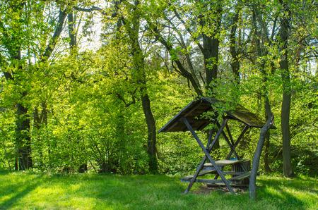春の森をライトアップ美しい太陽の下でベンチを休んで