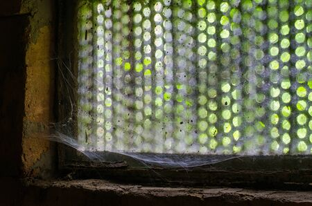 beautiful colors of nature playfully enter the dark old cellar though a cobweb covered window and protective grid 写真素材