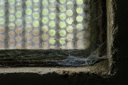 ゆっくりと、古いウィンドウのコーナーをお忘れで蜘蛛の巣をそれの複雑なフォーム、美容開発します。