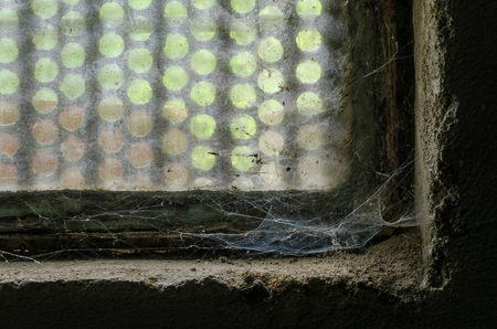 slowly, in the forgotten corner of an old window a spiders web develops in its intricate form and beauty