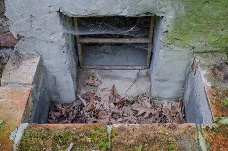 古いセラー窓の外の景色