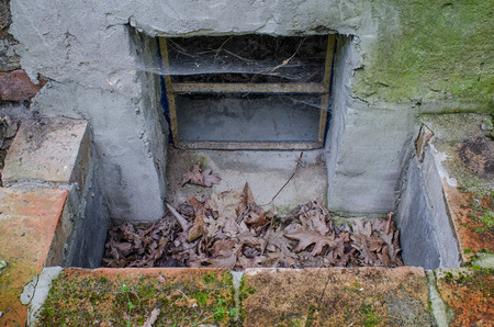 outside view of an old cellar window