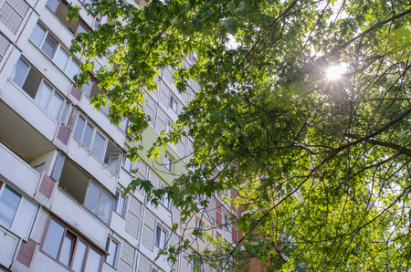 sun shining through the tree foliage in summer with an old, soviet era, residential building towering in the background in Kiev, the capital of Ukraine