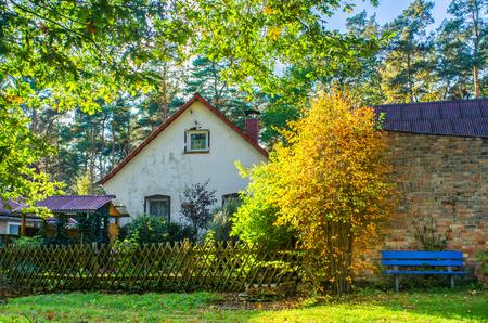 鮮やかな自然に囲まれた小さな村の家の美しい秋の早朝の田園風景