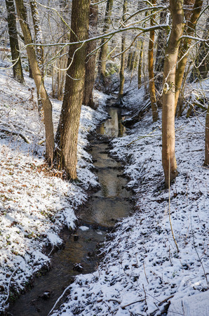 Small stream flowing through the snow covered forest in between trees, illuminated by the morning sun in winter