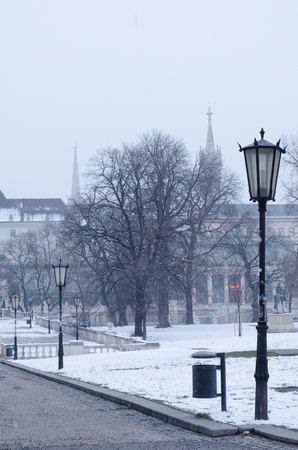 romantic Vienna in winter with a view from the Burggarten, where the towers of Saint Stephens Cathedral and of Augustinians Church are visible in the snowy haze