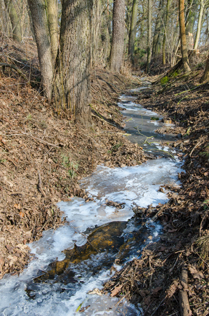 frozen stream in the forest on a cold but sunny winter day 写真素材