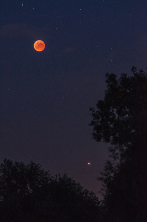 Total lunar eclipse  with red moon, stars and planet Mars over the silhouettes of trees