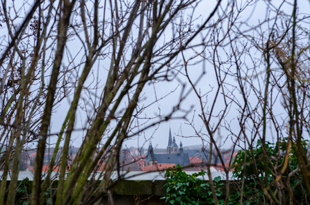 view to the Quedlinburg old town center through the bare plants at the castle hill 写真素材