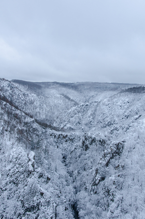 The Bode gorge in the valley between Harz mountains during winter