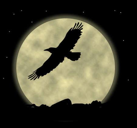 silhouette aquila: Aquila silhouette contro una luna sfondo