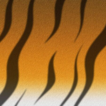 A illustration of the texture of a tigers fur