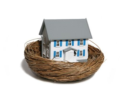 Home in nest theme Banque d'images