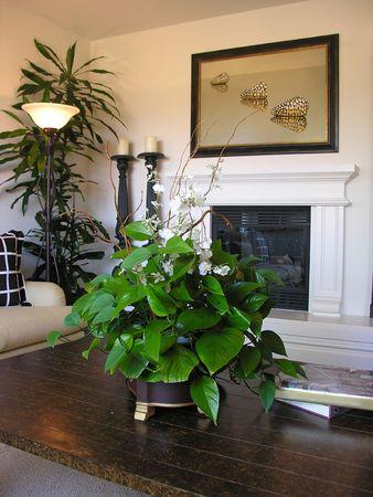 mantel: Living room interior