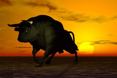 Black bull in the sunset Reklamní fotografie