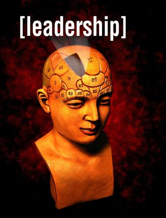 A psychology model highlighting the leadership section of the brain photo