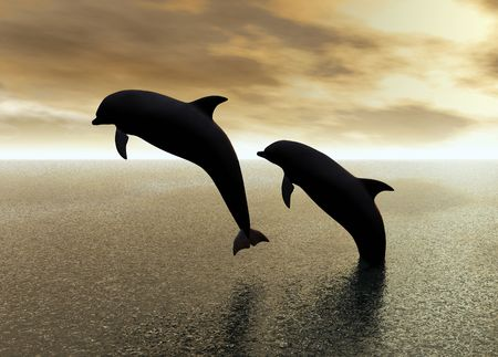 Two dolphins jumping and playing in the ocean photo
