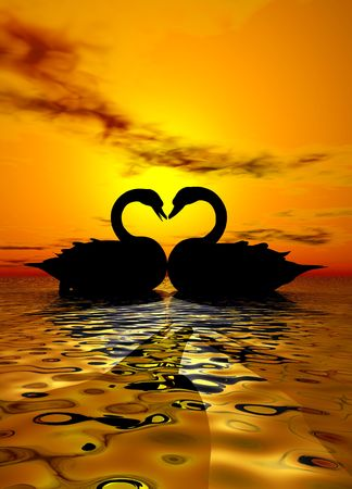 heart under: Two swans forming a heart under the sunset Stock Photo