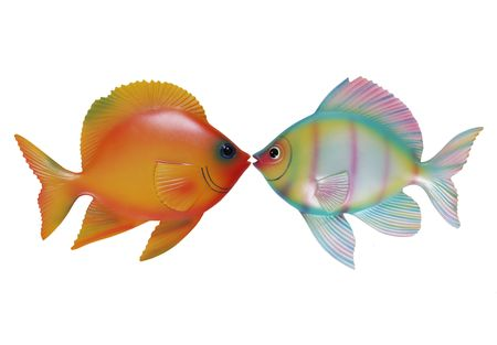Two colorful fish kissing on the lips over white photo