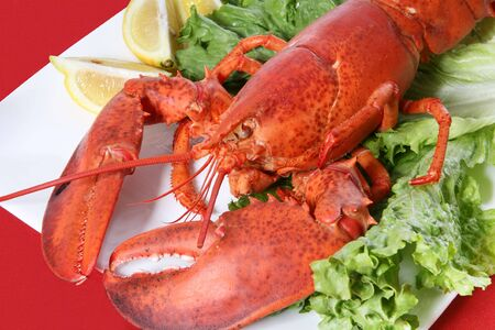 lobster dinner: A large lobster dinner in a restaurant