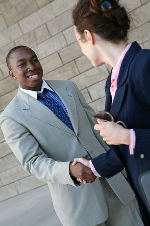 Two business professionals, man and woman, shaking hands Stock Photo - 1343248