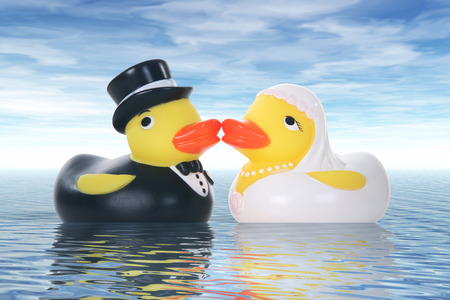 Toy duck couple getting married at a ocean wedding photo