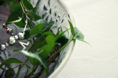 christmas ivy: Christmas decoration with green ivy and a silver garland on white plate on white background closeup