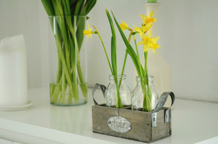 on yellow flower: Spring deco arrangement with daffodils in a bottle on white background