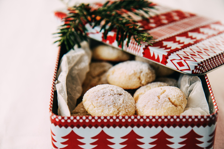Traditional swiss christmas cookies with coconut in a tin box