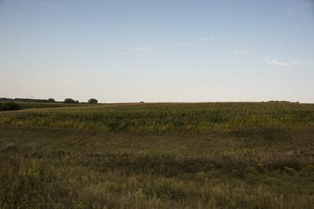 Field landscape Stock fotó