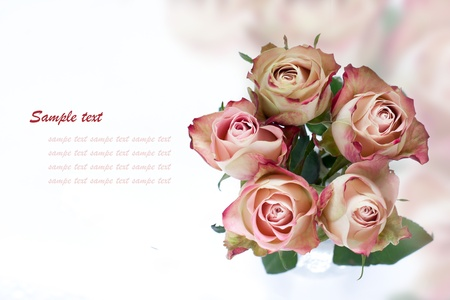 Bouquet of white-pink roses with text space